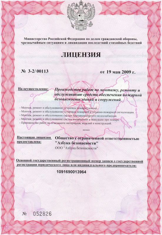 Лицензия ООО цветная001